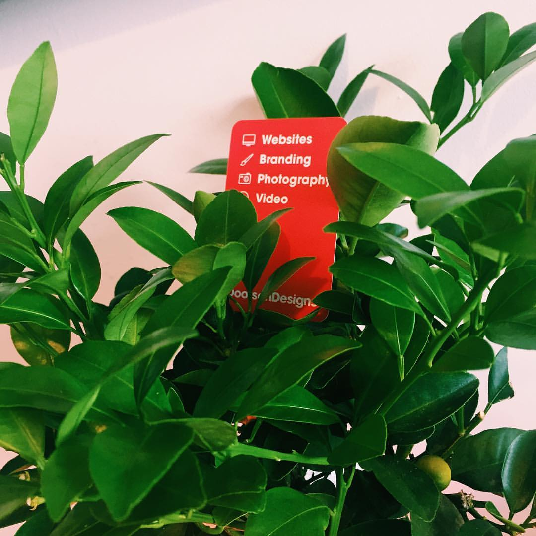 Our business cards grow on trees…